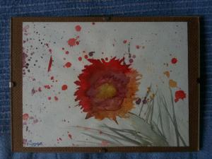 Aquarelle & Tinte